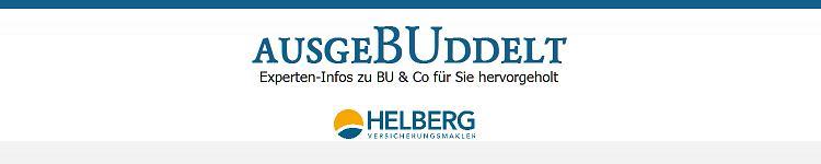 ausgeBUddelt - BU-Experten-Infos