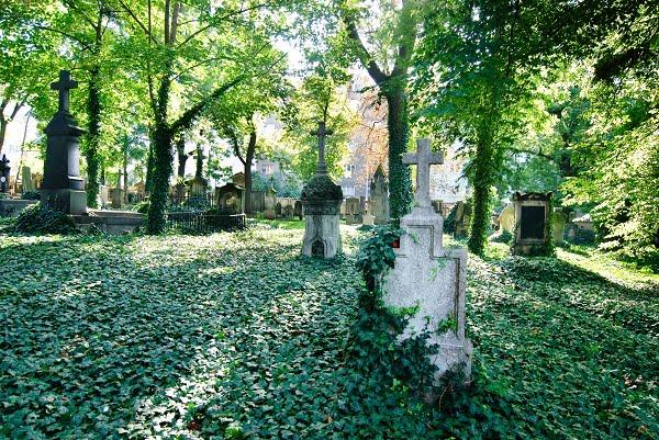 Ein schöner alter Friedhof.