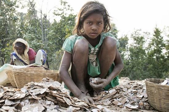 Kinderarbeit in Indien. Grafikquelle: terre des hommes